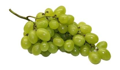Weintrauben am Strang